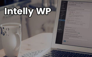 IntellyWP Discount Code – The WordPress Plugins With Marketing Oriented Technology