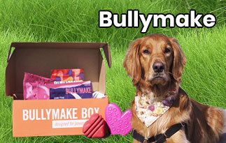 Bullymake Promo Code : Best Power Chewers For Dogs
