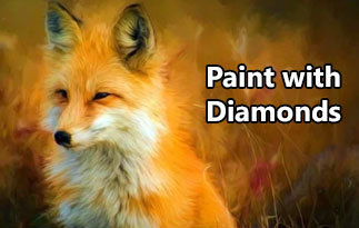 Paint With Diamonds Discount Code – High Quality Diamond Painting Kits for Adults
